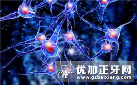 继发性三叉神经痛的四个主要的病变